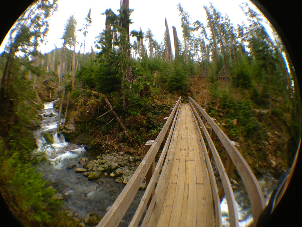 bridge over the falls