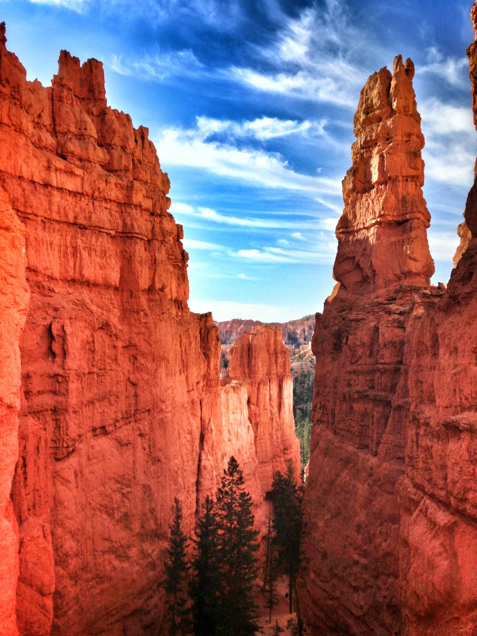 Hikes Bryce Canyon National Park today. It was incredible.