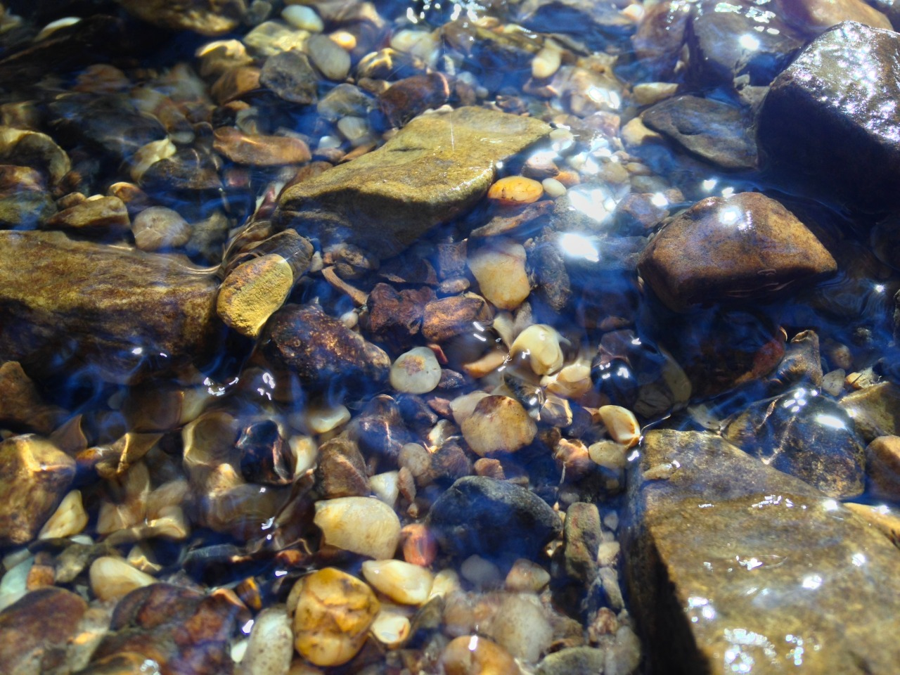 Water & Stone