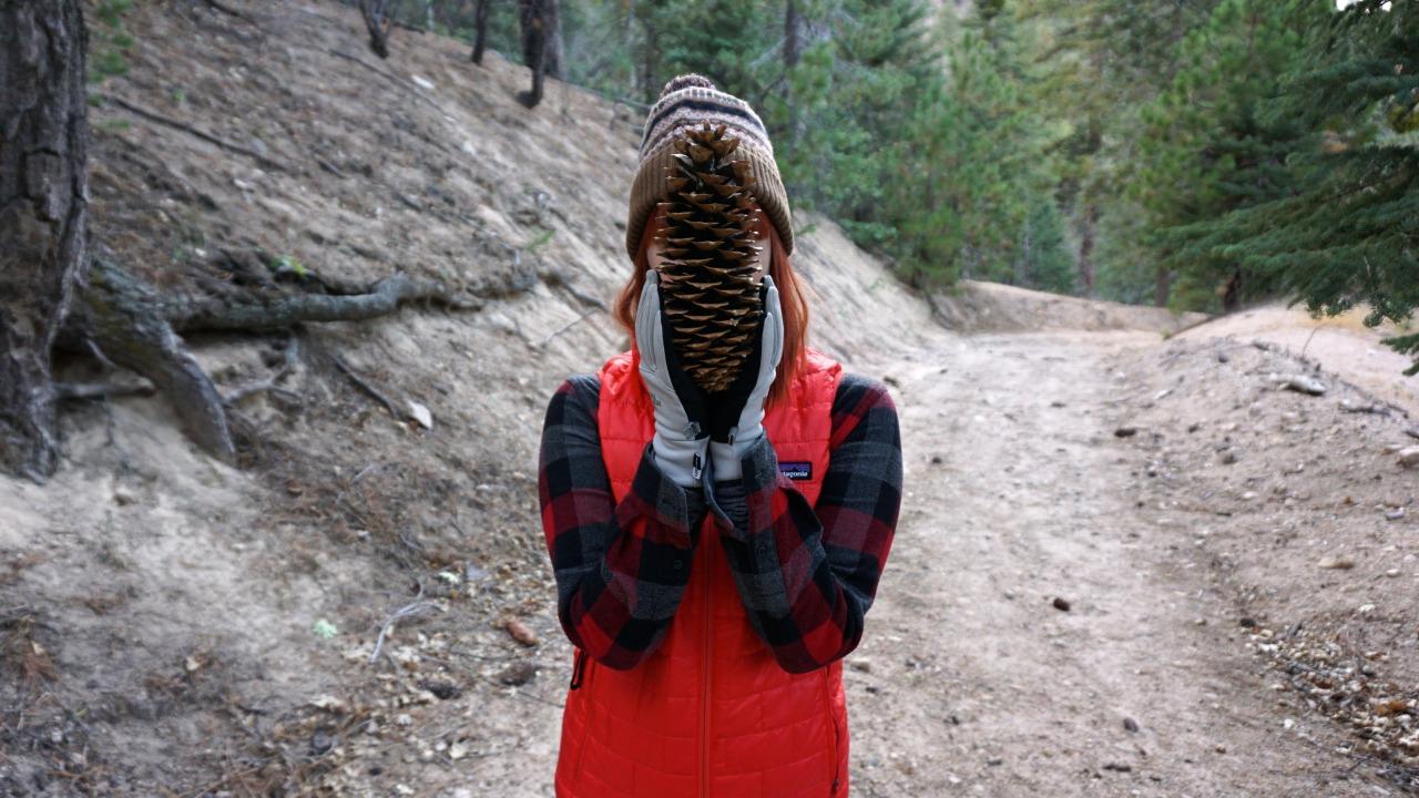 Cone Head pt. 1