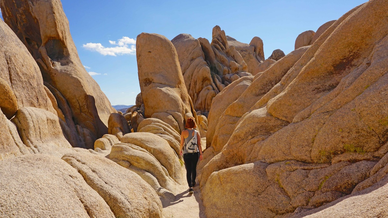 Exploring Joshua Tree