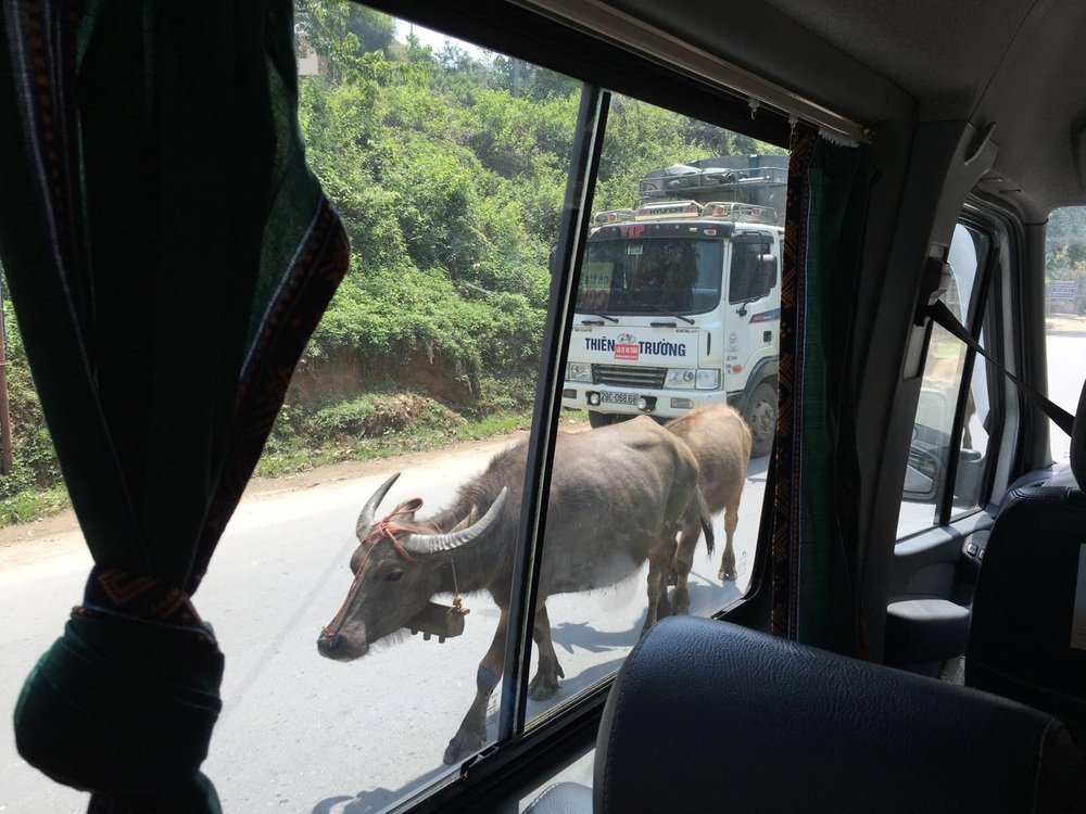 Sus snapped this photo from the van back to Hanoi