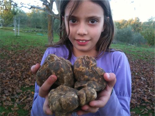 kid-truffles.jpg
