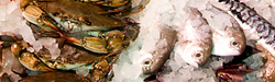 Monahan's Seafood Market   Fresh fish & seafood