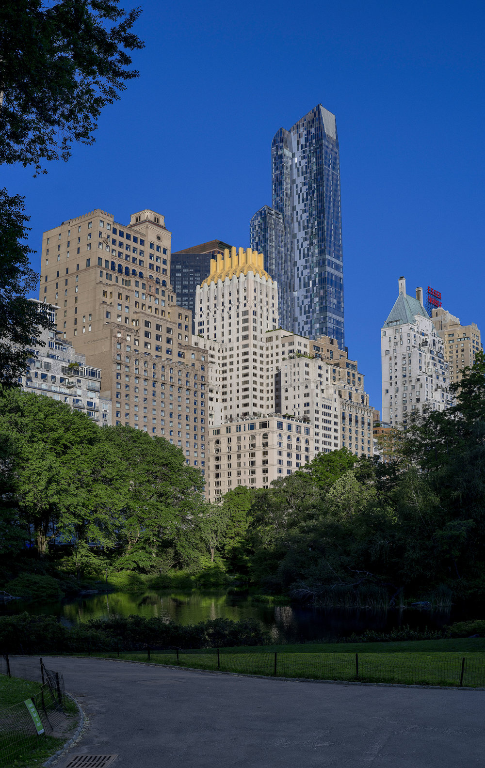 NYC Skyline from Central Park and incredible details