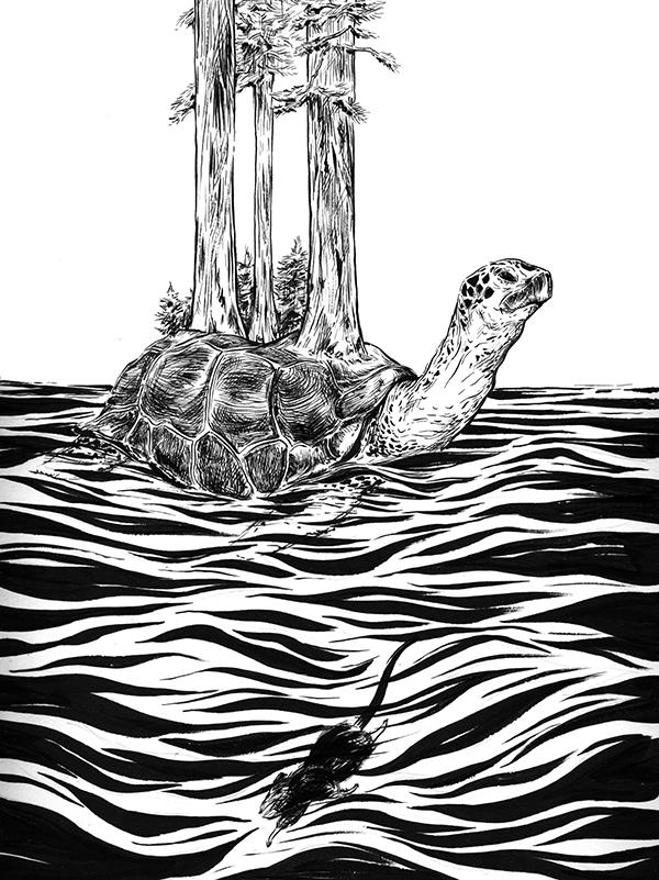 AlexMathers_TurtleAndMuskrat.jpg