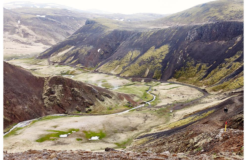 Iceland_2016_484_©LeilaAshtari_.jpg