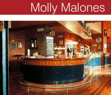 Molly Malones architect
