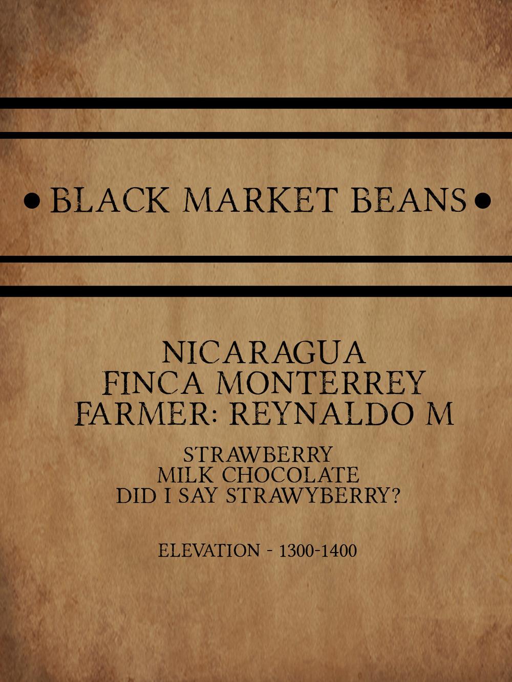 coffee_Nicaragua_finca_Monterrey_farm.jpg