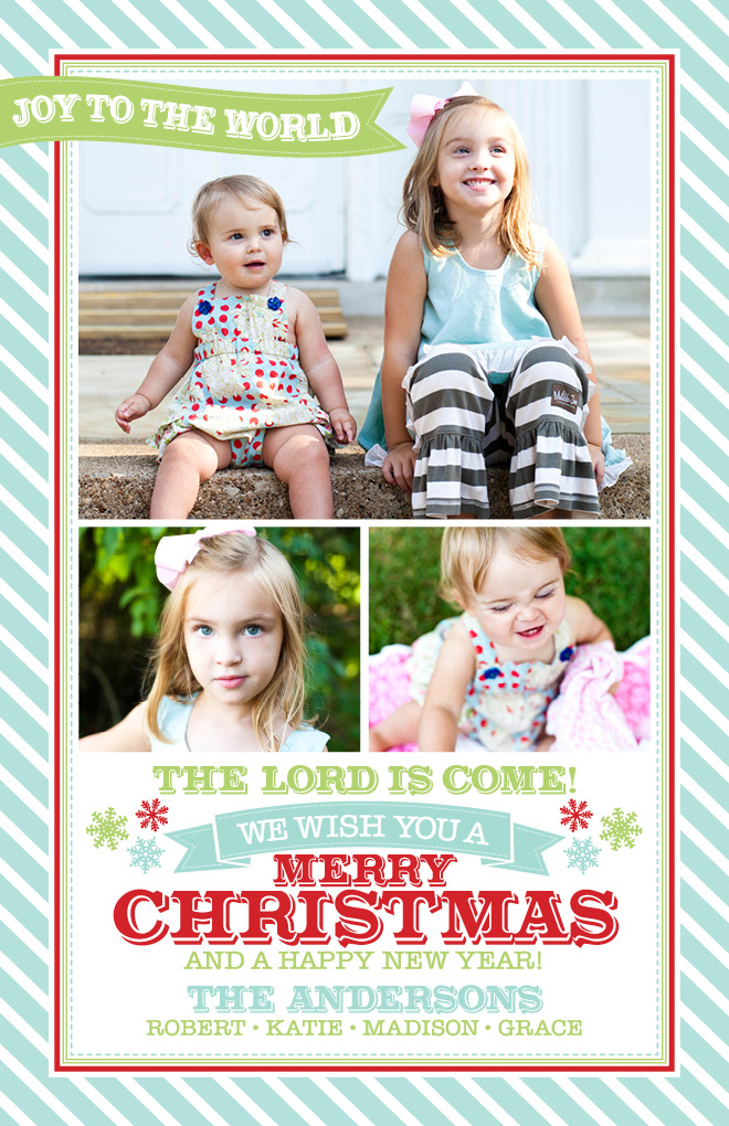 3 Photo Stripes Banners & Snowflakes