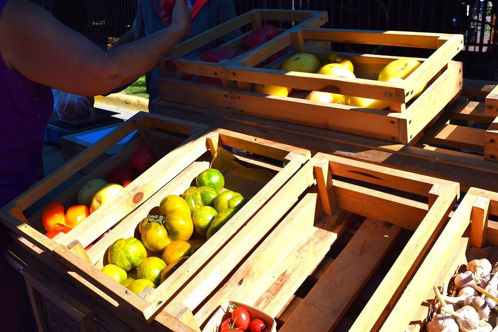 itinerant blog: salmorejo & the freshest produce in missoula