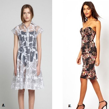 A: Daniela-Stephanie Allegra Shirt Dress ($740AUD) B. ASOS Structured Bandeau Floral Pencil Dress ($102AUD)