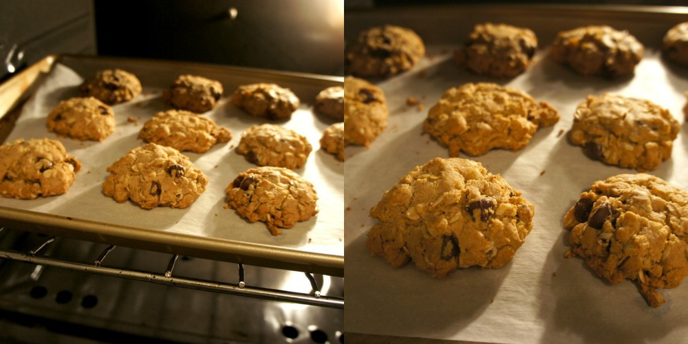 Peanut Butter Chocolate Chip Cookies in Oven