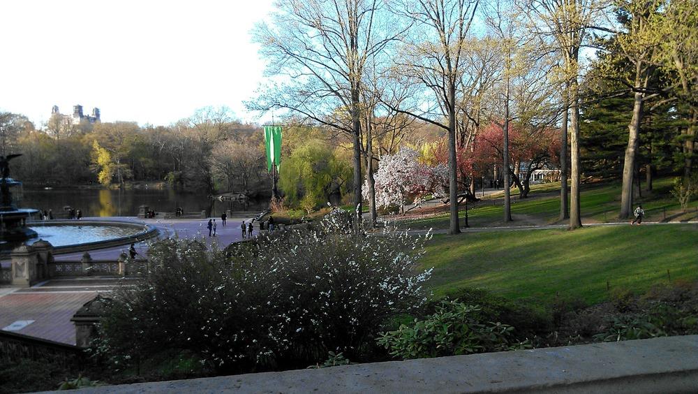 Central Park April 22 2013.jpg
