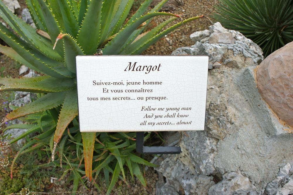 margot cacus