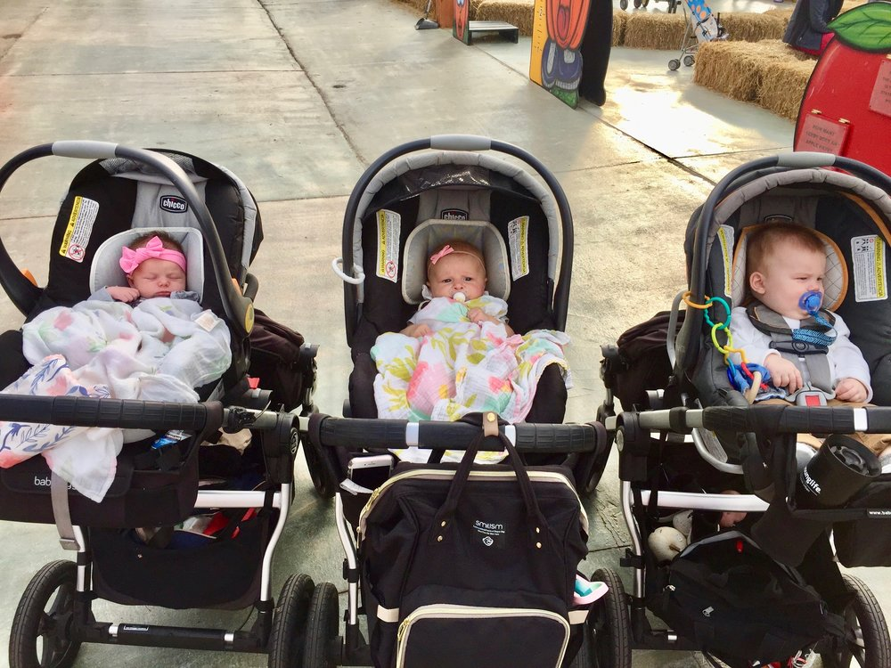 Koetsiers City Select Strollers.jpg