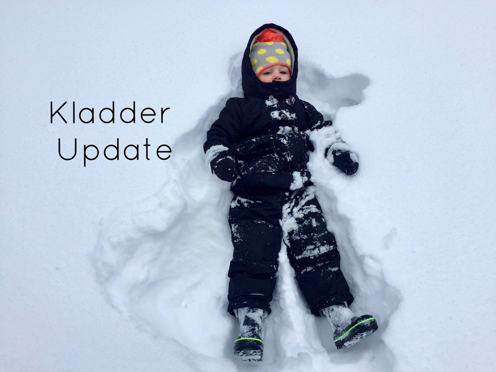 Grand Rapids Snow.jpg