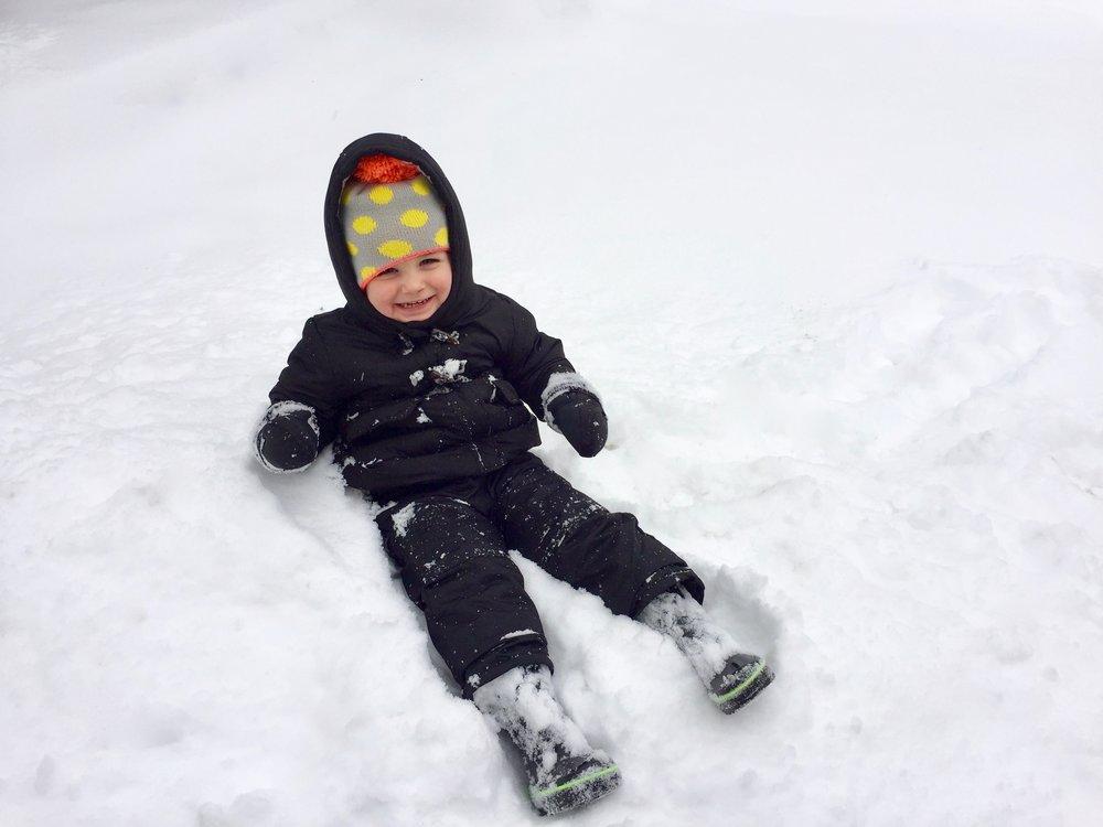 Grand Rapids Snow 1.jpg