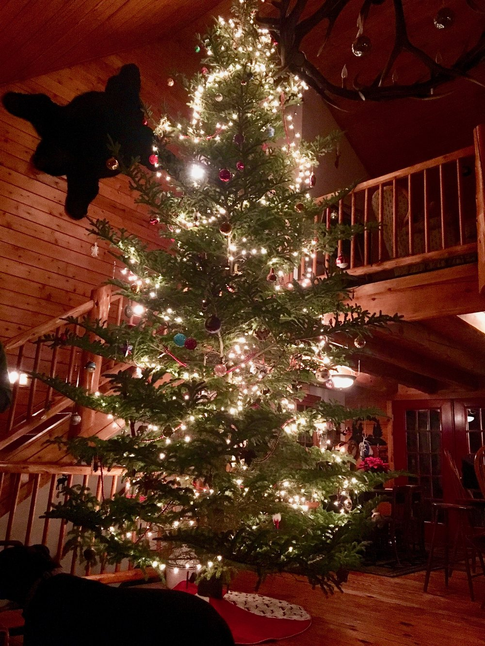 Log Cabin Christmas.jpg