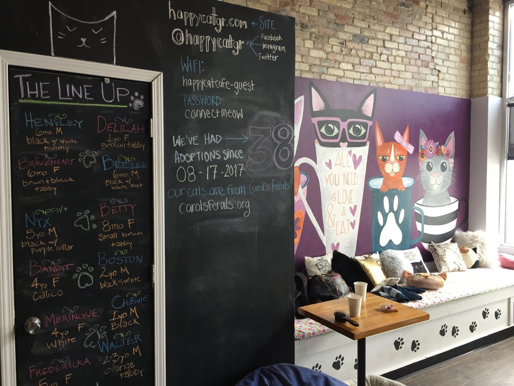 happy cat cafe grand rapids adoption.jpg