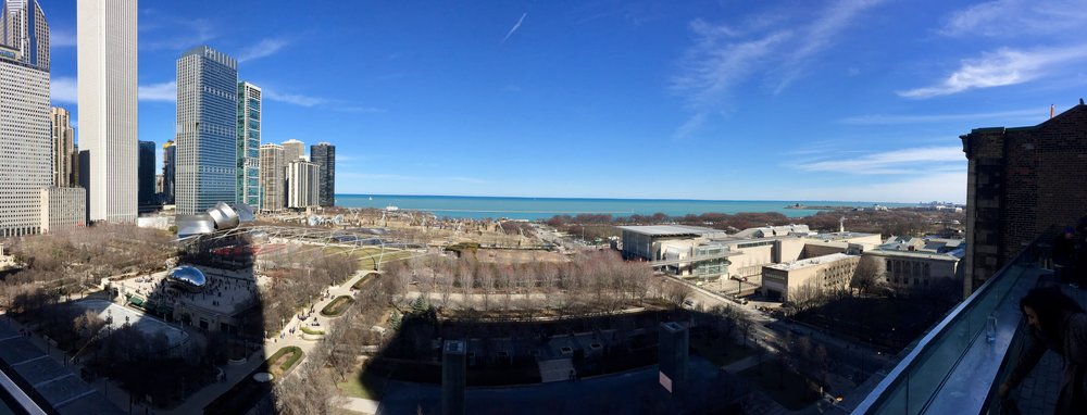 Rooftop Bar Chicago park view.jpg