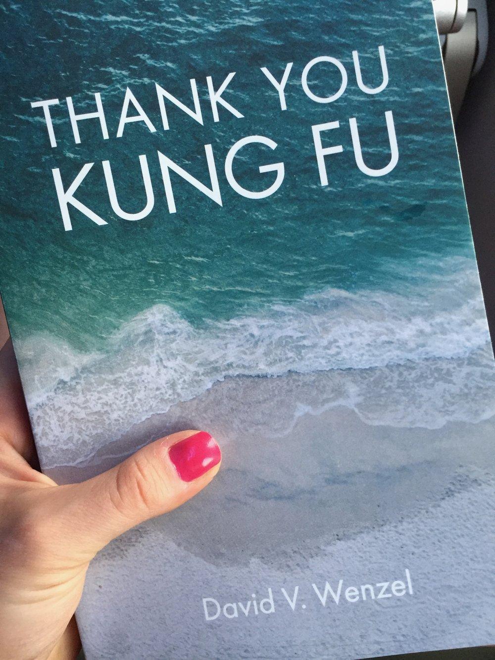 Thank You Kung Fu David Wenzel.jpg