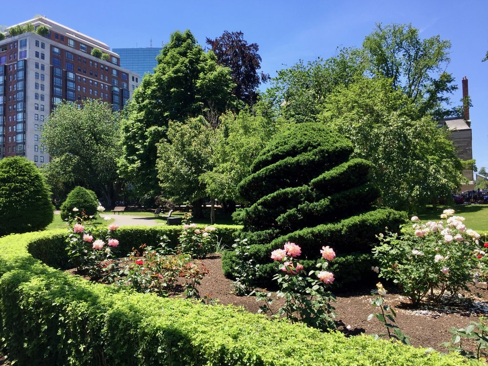Boston Public Gardens.jpg