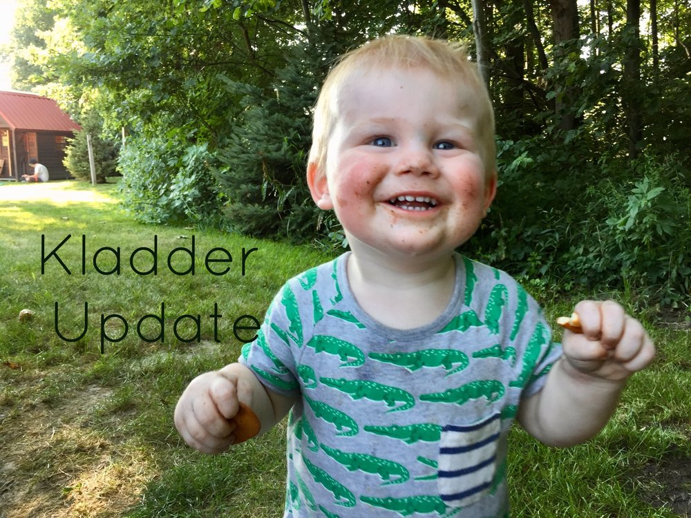 Yogi Bear Campground Baby.jpg