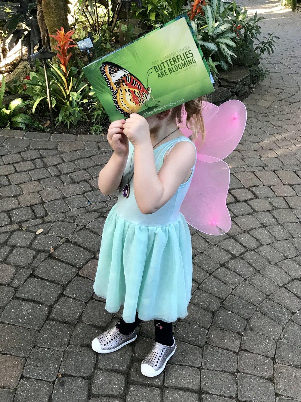 Butterflies FMGs.jpeg