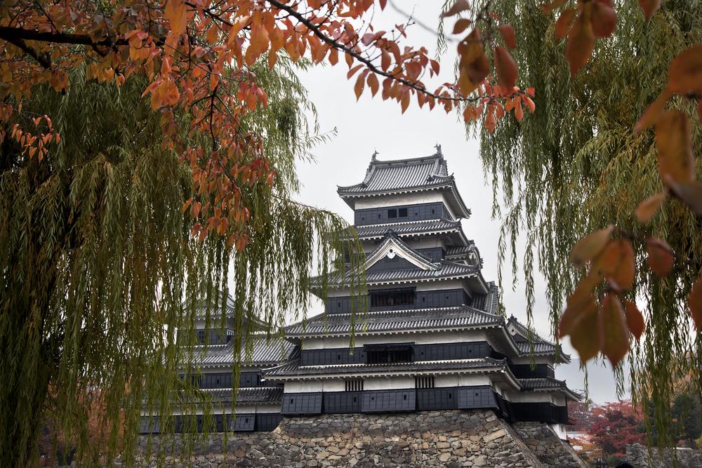 Matsumoto-11.11.12_13635.jpg