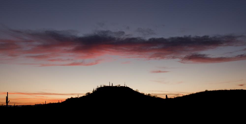 Saguaro NP Sunset.jpg