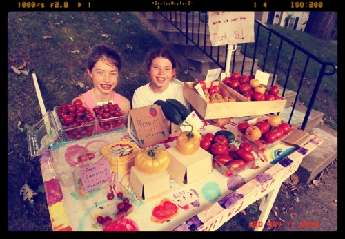 GEM, THE LOCALS 'LOCAL' TOMATO STAND….