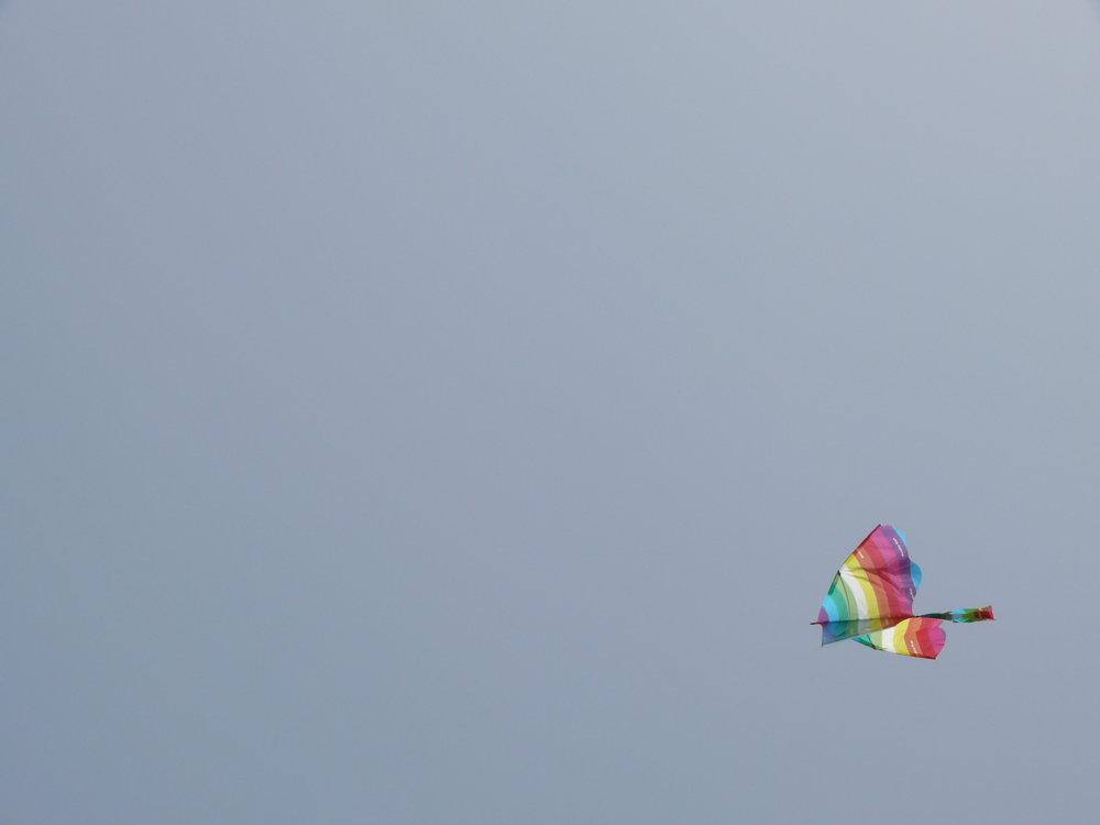 L1010025.JPG