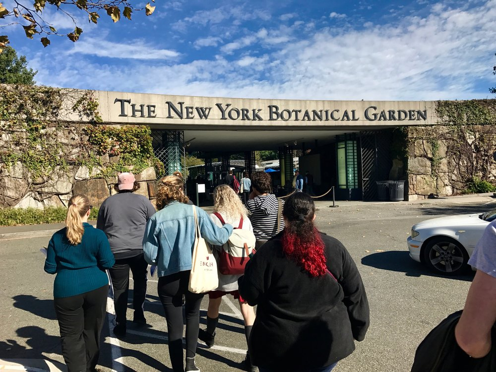 Concentrators enter the New York Botanical Garden for some creative writing fieldwork.