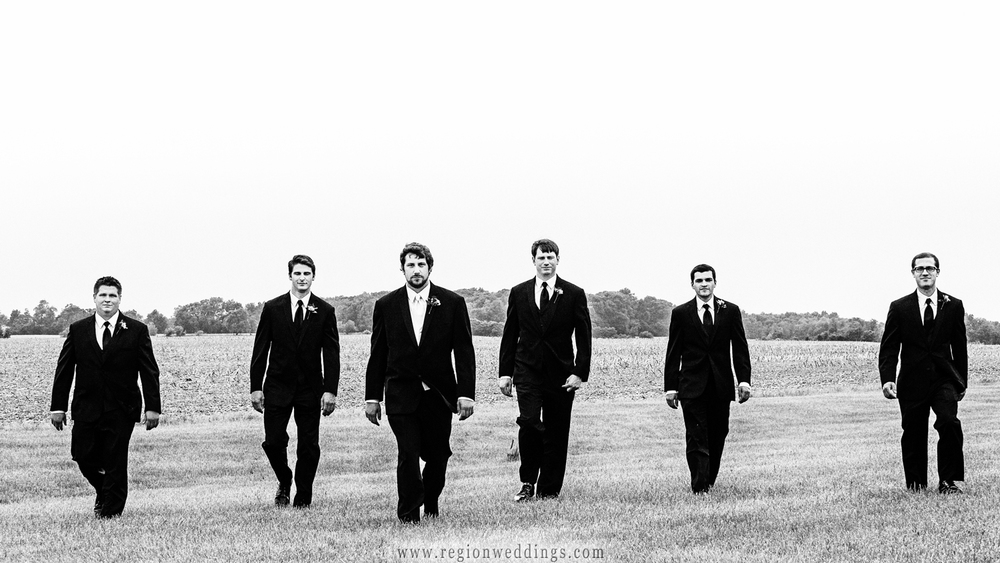 The groomsmen walk in an Indiana field for this black and white wedding photo.