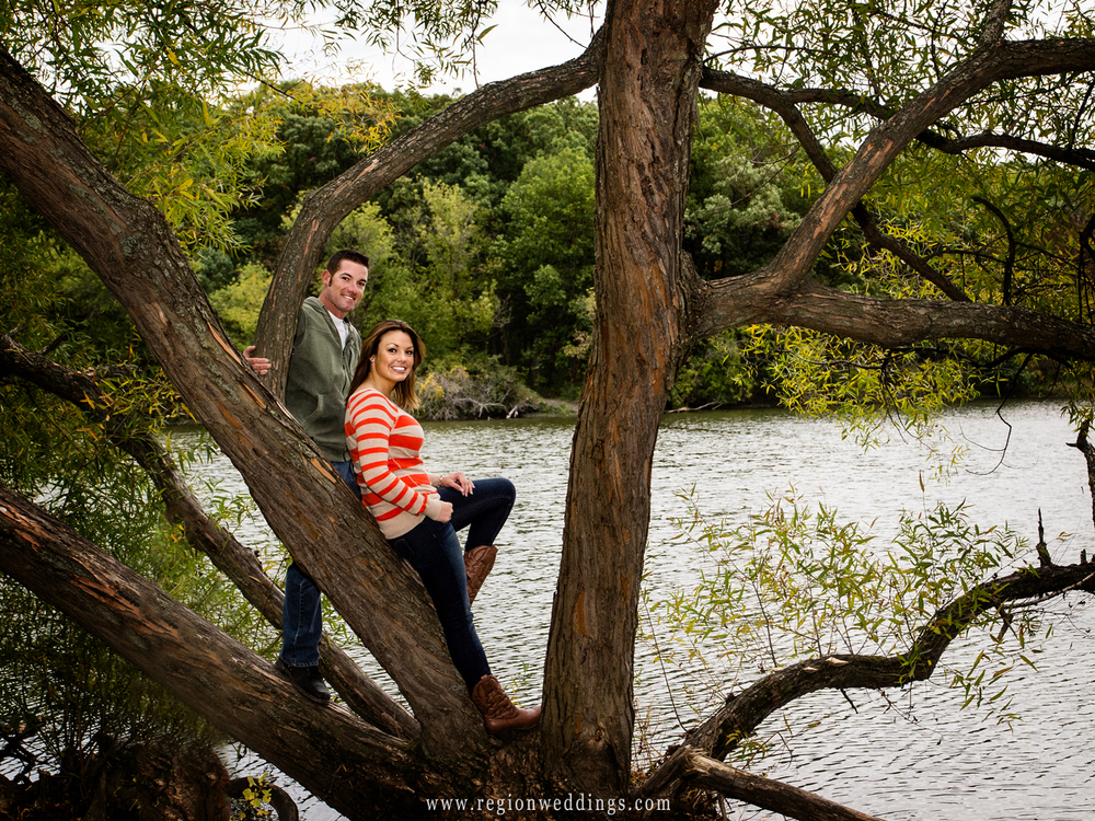 Couple is perched in a tree at Lemon Lake Park in Crown Point, Indiana for their fall engagement photos.
