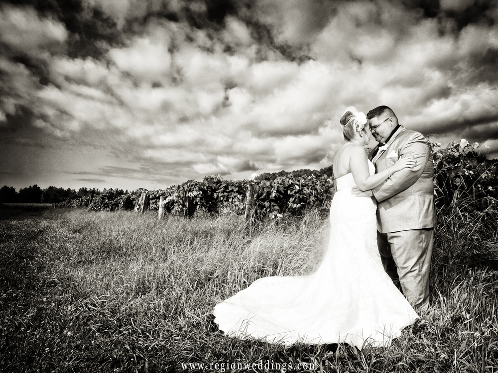 A dramatic sky overlooks the newlyweds as they embrace at Willow Harbor Vineyard in Three Oaks, Michigan.