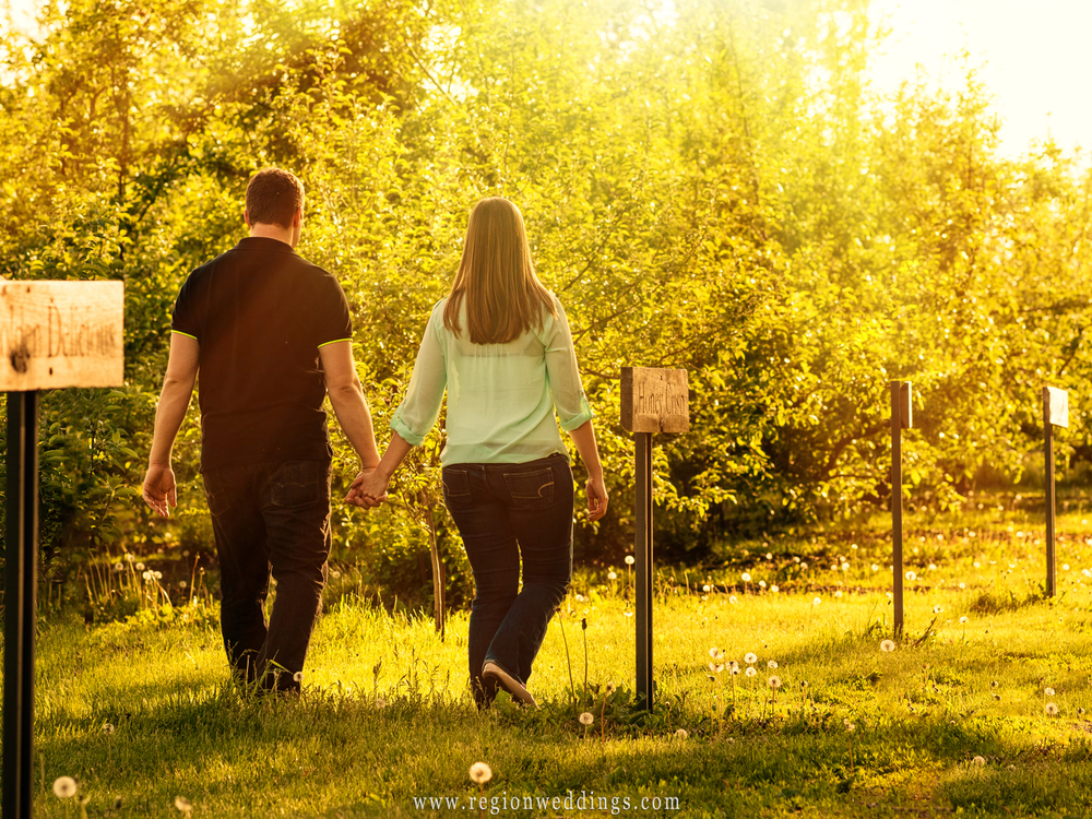 An engaged couple walks among the apple orchards.