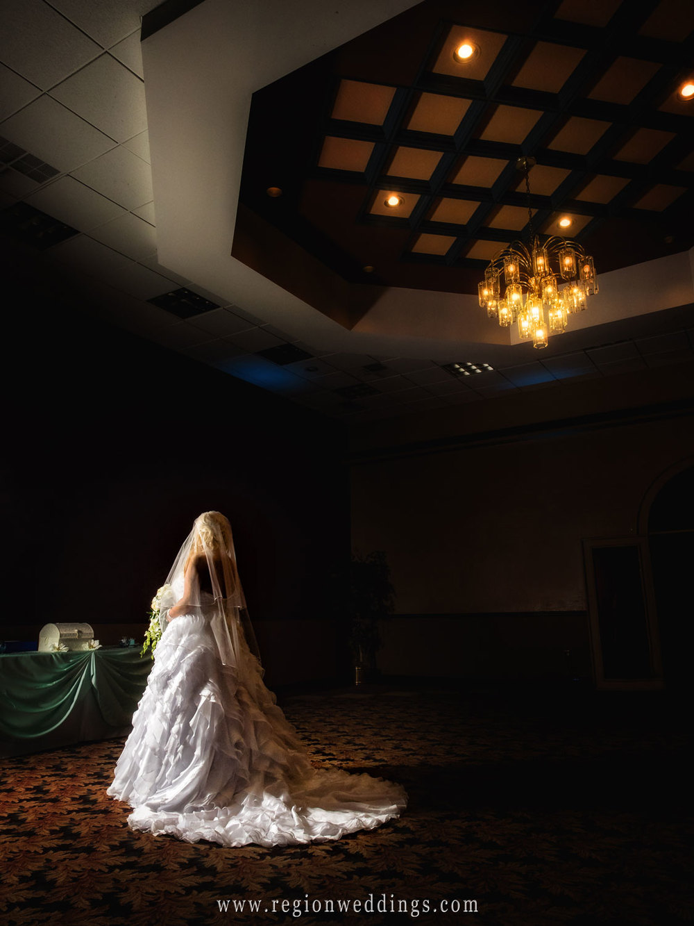 The bride underneath the chandelier at St. Elijah Serbian American Hall.