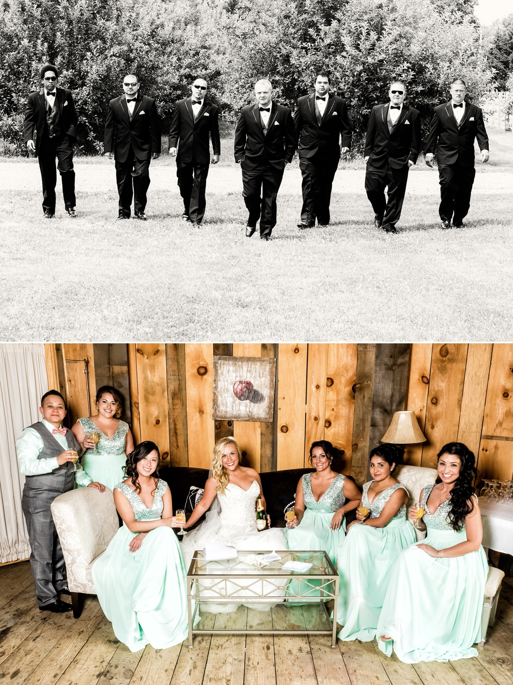 The wedding party at County Line Orchard.