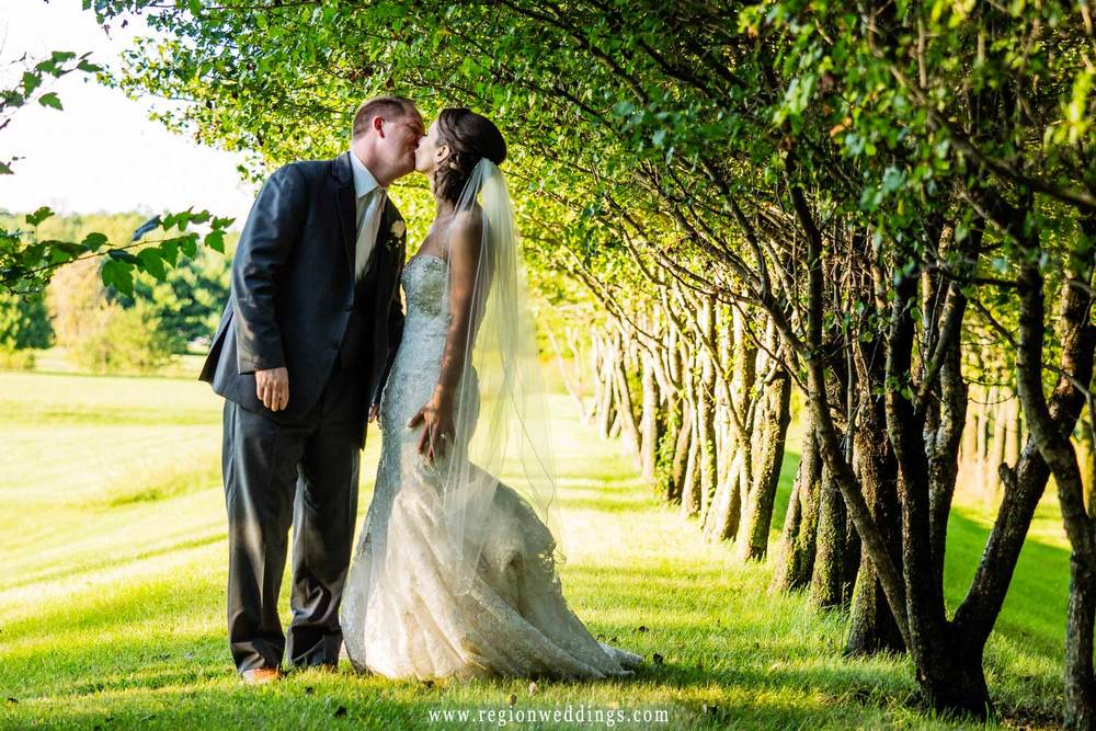 The bride and groom kiss in the shade of a row of trees.