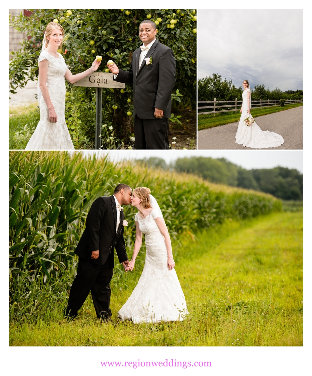 wedding photos at county line orchard