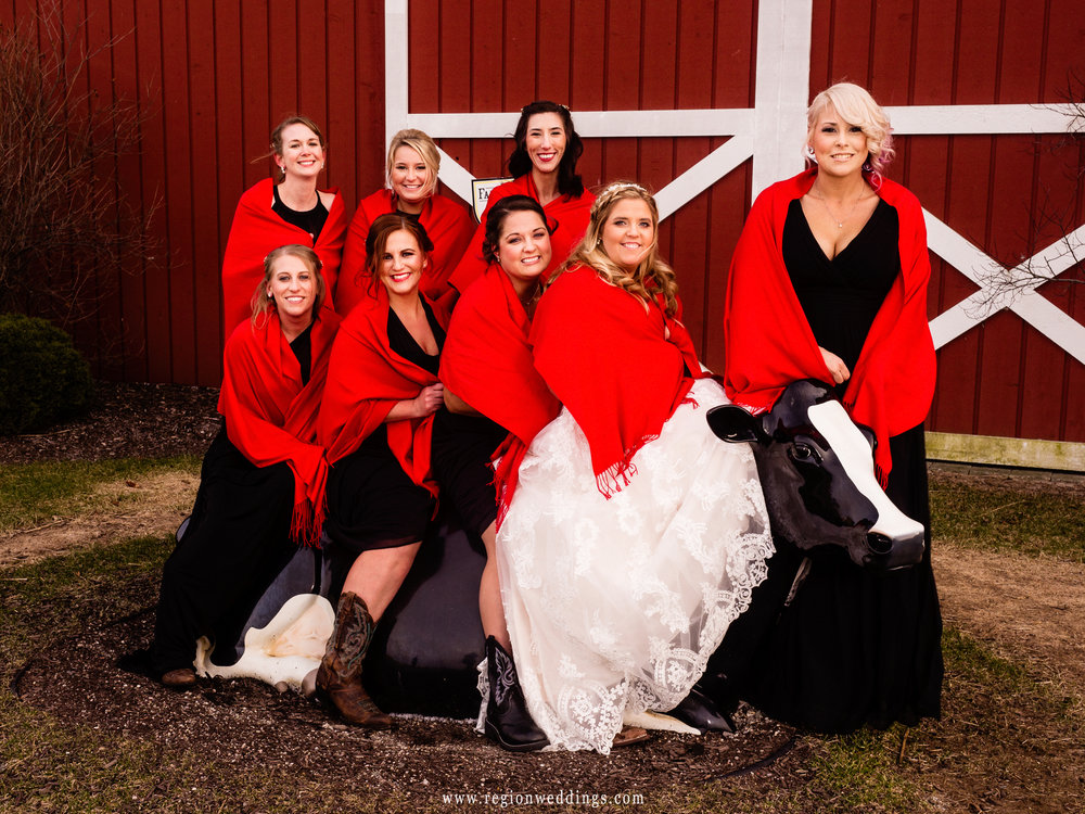 The bridesmaids visit a cow at Fair Oaks Farmhouse.