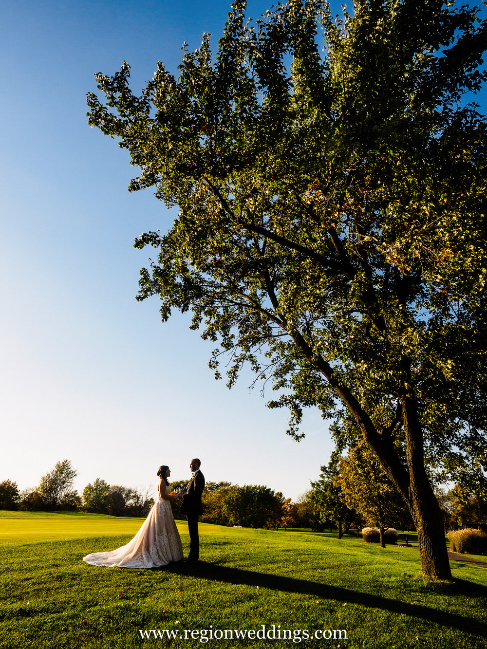 Bride and groom under a tree at Briar Ridge Country Club in Dyer, Indiana.
