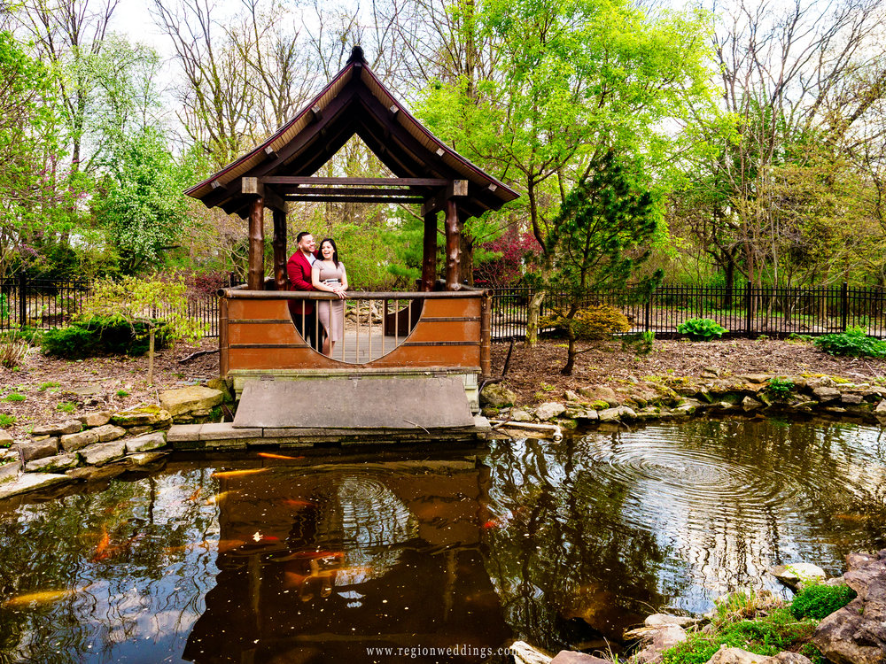Fish swim in the pond at Ogden Garden during an engagement photo session.