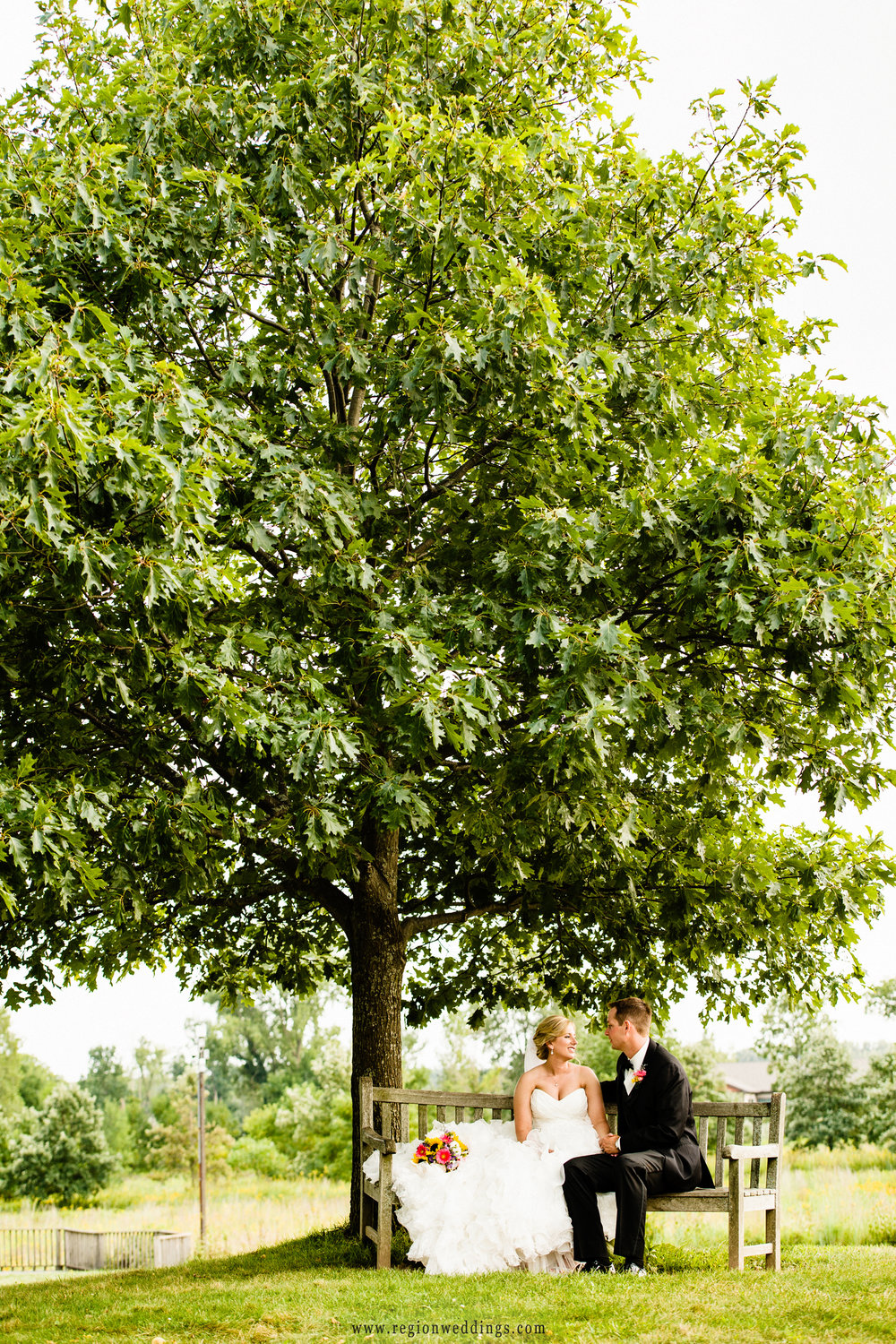 Bride and groom under a big tree at Coffee Creek Nature Preserve.