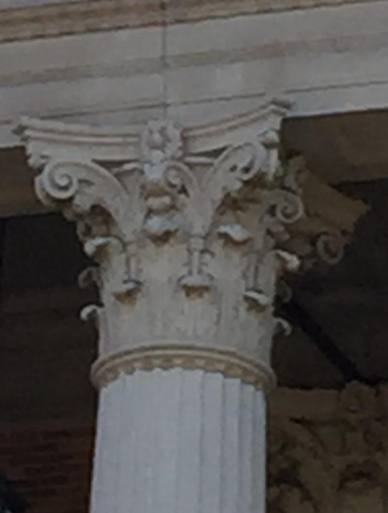 cas06-Corinthian column-800.jpg