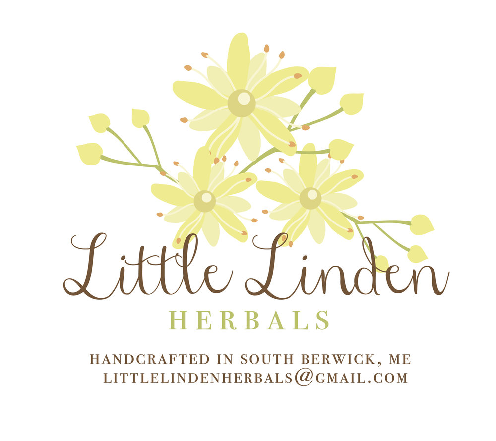 little linden flower-01.jpg