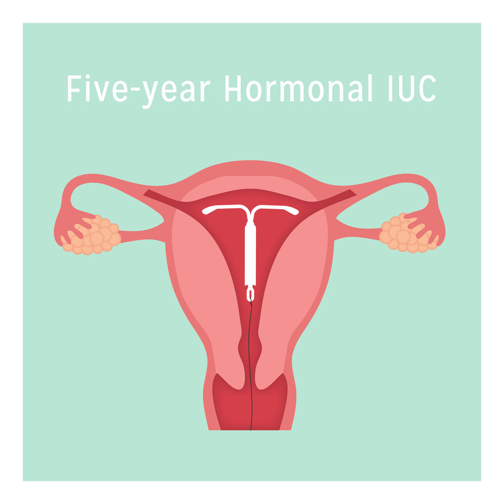 5 year Hormonal IUC-01.jpg