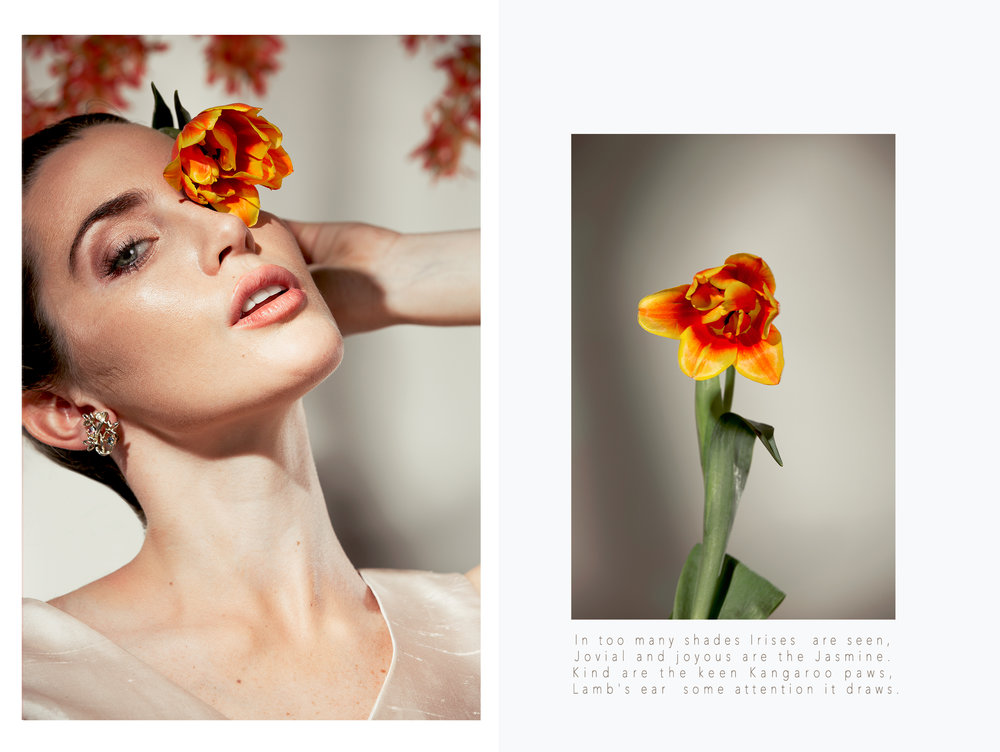 ROSES EDITORIAL SPREAD 3.jpg